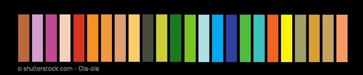 Typberatung - Frühlingstyp